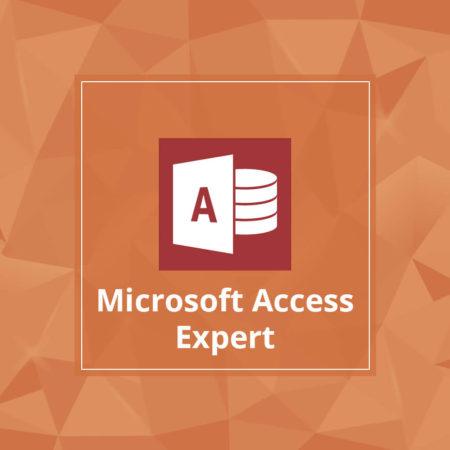 Microsoft Access Expert