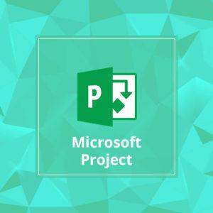 μαθήματα microsoft project χαλκίδα